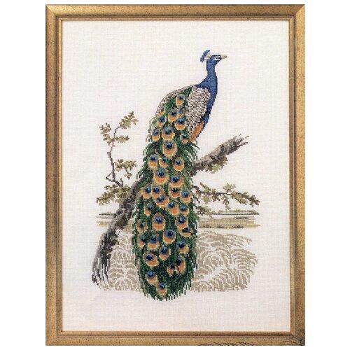 Купить Набор для вышивания Павлин 34 x 46 см 73-99122, Oehlenschlager, Наборы для вышивания