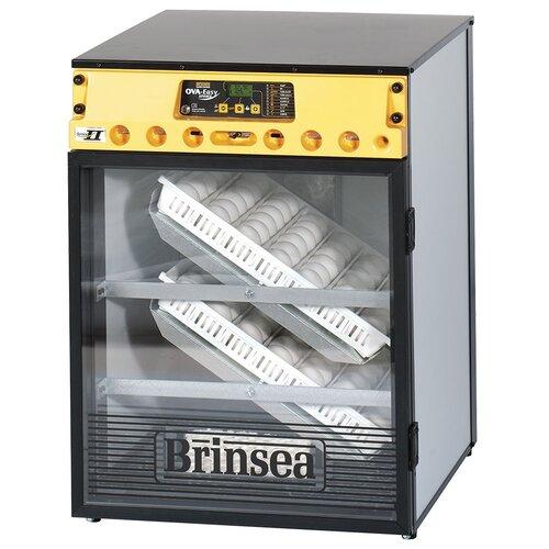 Инкубатор Brinsea OVA-Easy Advance EX Series II 100 черный