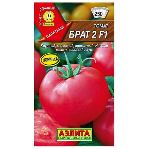 Семена Агрофирма АЭЛИТА Томат Брат 2 F1 10 шт.