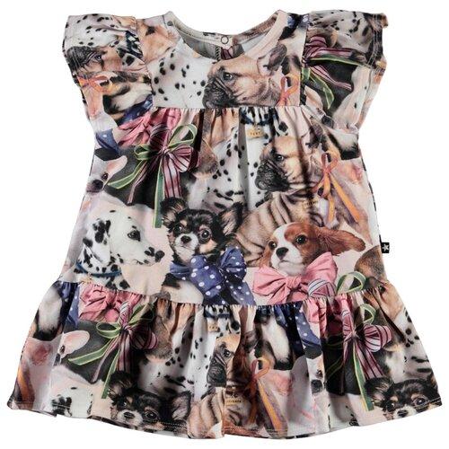 Купить Платье Molo размер 86, разноцветный, Платья и юбки