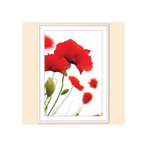 Фоторамка Poster lux white (10х15 см)