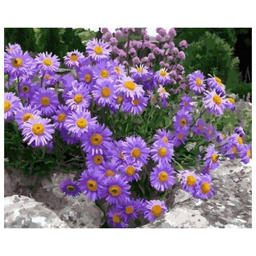 Купить Цветной картина по номерам Лиловые ромашки 40х50 см (GX29786), Картины по номерам и контурам