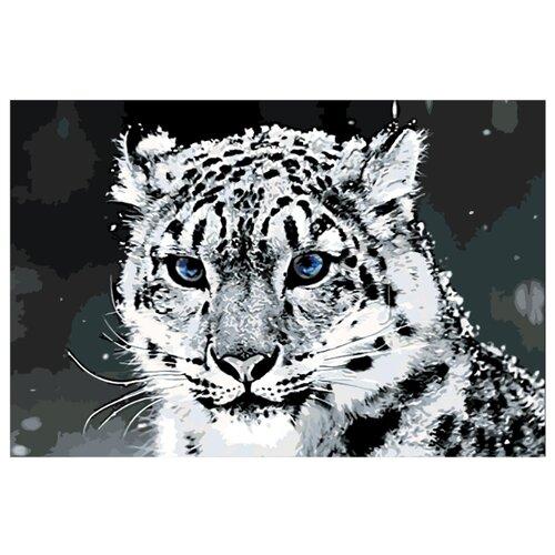 Купить Картина по номерам, 100 x 150, Z49772, Живопись по номерам , набор для раскрашивания, раскраска, Картины по номерам и контурам