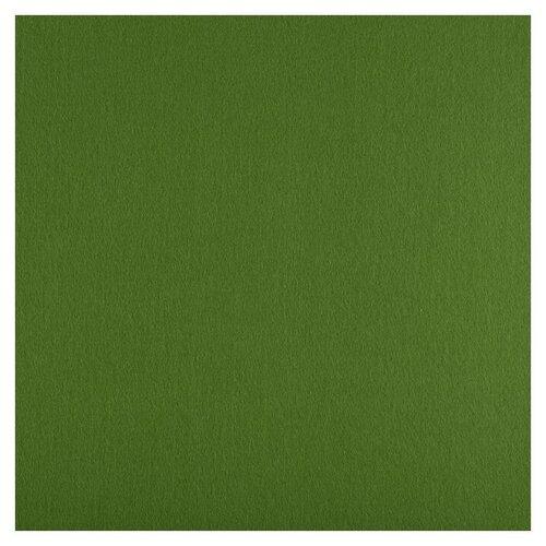 Купить Gamma Premium фетр декоративный 33 х 53 см FKS12-33/53 865 св.зеленый, Валяние