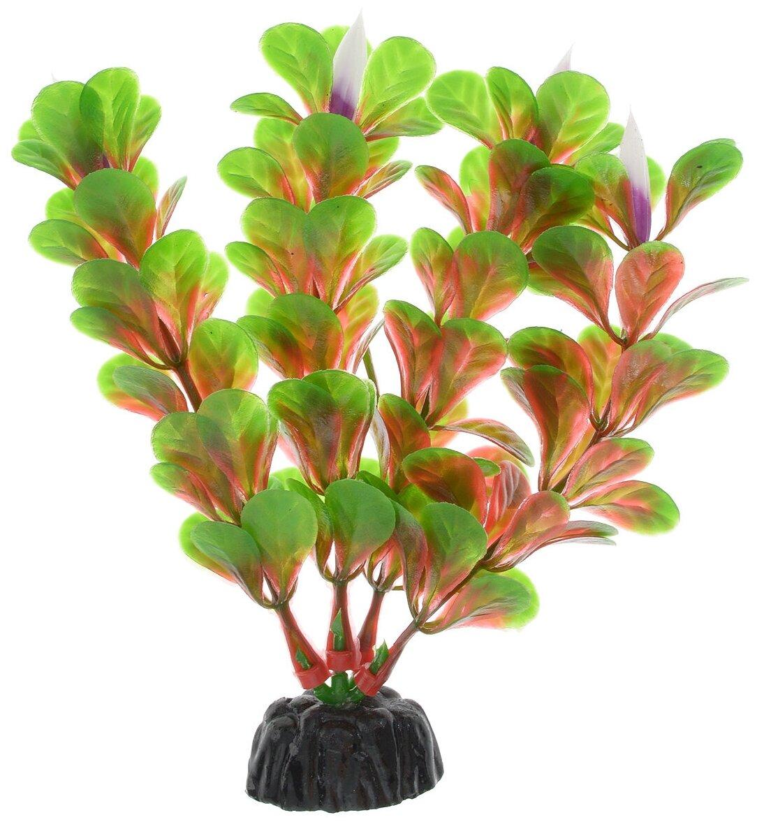Искусственное растение BARBUS Людвигия ползучая 10 см