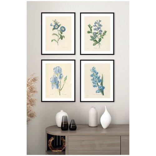 Постеры на стену для интерьера Postermarkt Набор постеров Ботаническая иллюстрация цветов №1, постеры в черной рамке, размер 30х40 см, постеры картины для интерьера