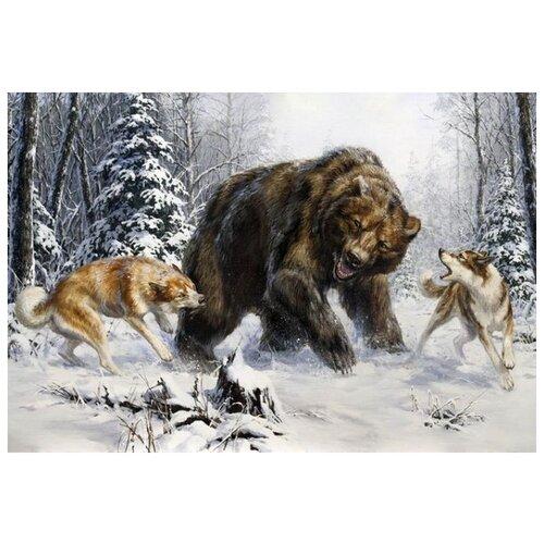 Лайки и медведь
