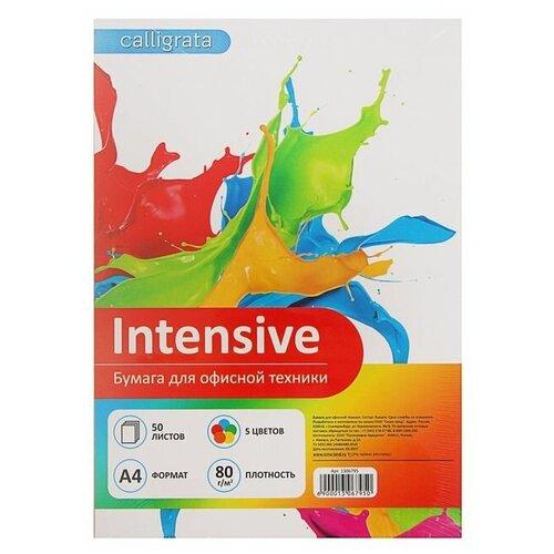 Фото - Бумага Calligrata A4 Intensive 80 г/м² 50 лист., 5 цветов водяной полотенцесушитель grota kamelo 50 80