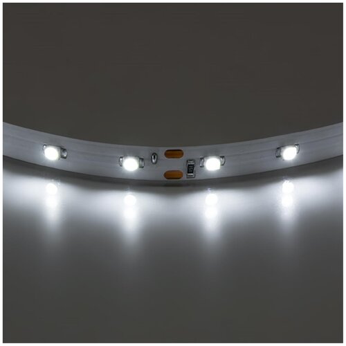 Светодиодные ленты одноцветная Lenta 400004