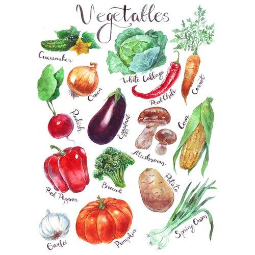 Купить Плакат Квинг А2 Овощи II — плакат на английском языке, с примерами, Обучающие плакаты