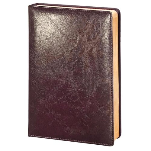 Купить Ежедневник InFolio Challenge недатированный, искусственная кожа, А5, 160 листов, bordo, Ежедневники