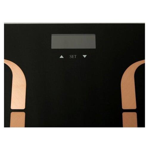 весы centek ct 2413 Весы электронные CENTEK CT-2431 Smart