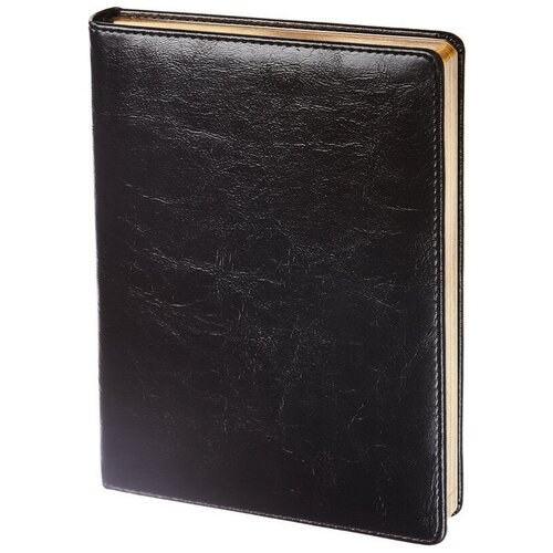 Купить Ежедневник недатированный черный, тв пер А5, 160л, Challenge I504d/black, InFolio, Ежедневники