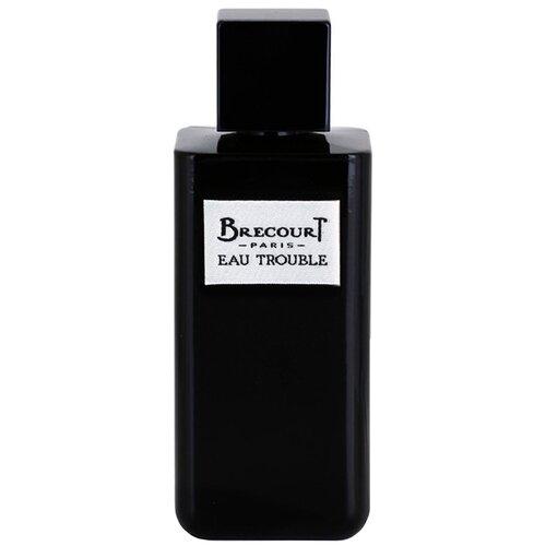 Купить Парфюмерная вода Brecourt Eau Trouble, 100 мл