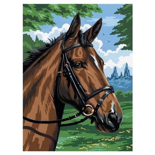 Royal & Langnickel Картина по номерам на холсте Гнедой конь 22х30 см (PCS8)
