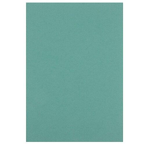 Цветной картон тонированный 200 г/м2 Лилия Холдинг, A4, 50 л.