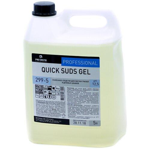 Усиленное средство для чистки грилей и духовых шкафов Quick Suds Gel Pro-Brite, 5 л недорого