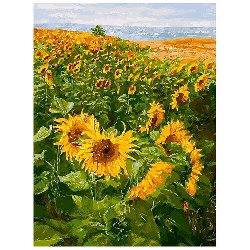 Купить Картина по номерам «Солнечные братья», 30x40 см, Белоснежка, Картины по номерам и контурам