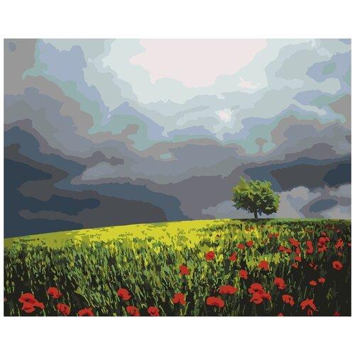 Картина по номерам «Маковое поле», 40x50 см, Артвентура картина по номерам flamingo маковое поле 3991234 40 х 50 см