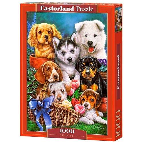 Пазл Castorland Puppies (C-104048), 1000 дет.