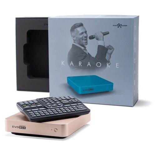 Караоке-комплект EVOBOX Plus с микрофонами и стереосистемой