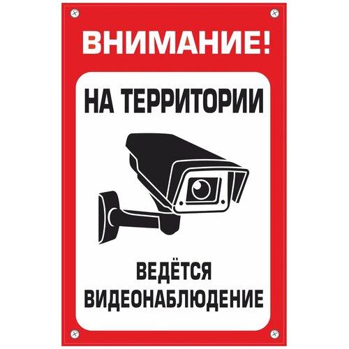 """Табличка TPS007 """"Наблюдение"""" пластик 3 мм30*195 см"""