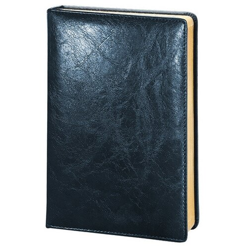 Купить Ежедневник недатированный синий, тв пер А5, 160л, Challenge I504d/blue, InFolio, Ежедневники