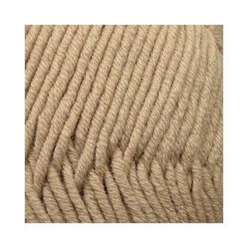 Пряжа для вязания ПЕХ Зимняя премьера (50% мериносовая шерсть, 50% акрил) 10х100г/150м цв.258 бежевый