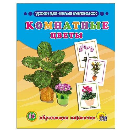 Набор карточек Проф-Пресс Уроки для самых маленьких. Комнатные растения 22x17 см 16 шт.