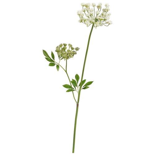 Искусственное растение Анна Королевская Мидл Кружевная белая 70 см, цвет: белый pablo de gerard darel белая блузка с рельефной отделкой