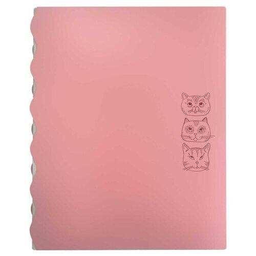 Купить Папка на резинках пластиковая коты, полипропилен, А4, 23.5х30.5см, 4 отд/53483, Феникс+, Файлы и папки