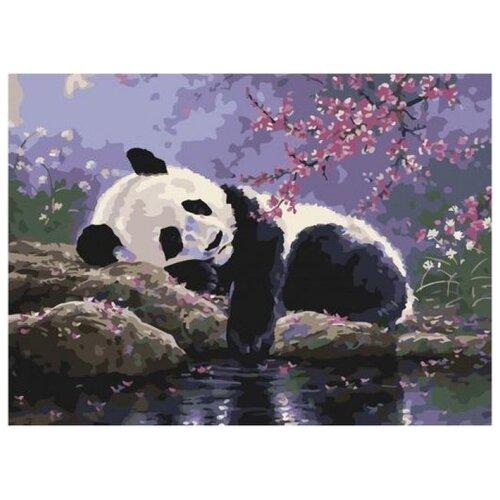 Купить Отдых панды в саду под сакурой, Paintboy, Картины по номерам и контурам