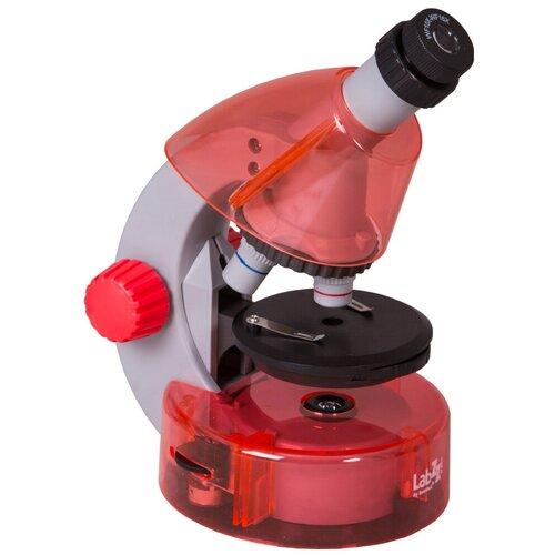 Фото - Микроскоп LEVENHUK LabZZ M101 orange микроскоп levenhuk labzz m101 orange