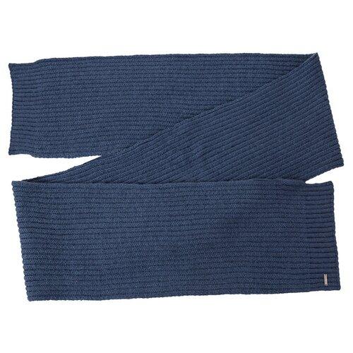 Шарф мужской Finn Flare, цвет: серо-голубой A20-22147_105, размер: Единый