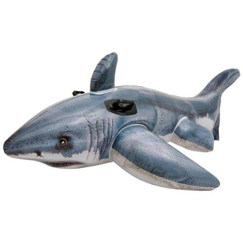 Фото - Надувная игрушка-наездник Intex Акула 57525 серый игрушка наездник надувная intex черепаха с ручками intex 191х170 от 3 лет 57555