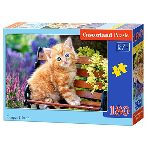 Пазл Castorland Ginger Kitten (B-018178), 180 дет. пазл castorland к старту готов b 018406 180 дет