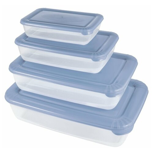 Фото - Plast Team Набор емкостей для хранения пищевых продуктов прямоугольных 4 шт, туманно-голубой корзина для хранения 3л plast team oslo туманно голубой pt1350тг 10