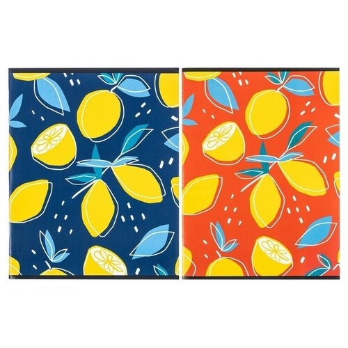 Купить Тетрадь общая А5, 96л, кл, скоб, блок-офсет-2 Attache Лимоны в асс 5 штук, Тетради
