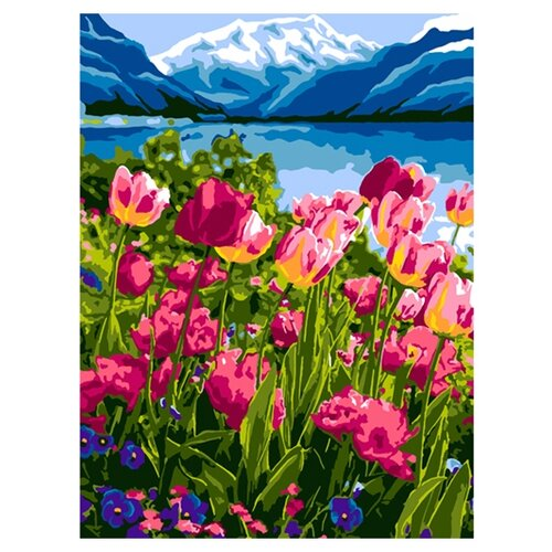 LORI картина по номерам Тюльпаны 28.5х38 см