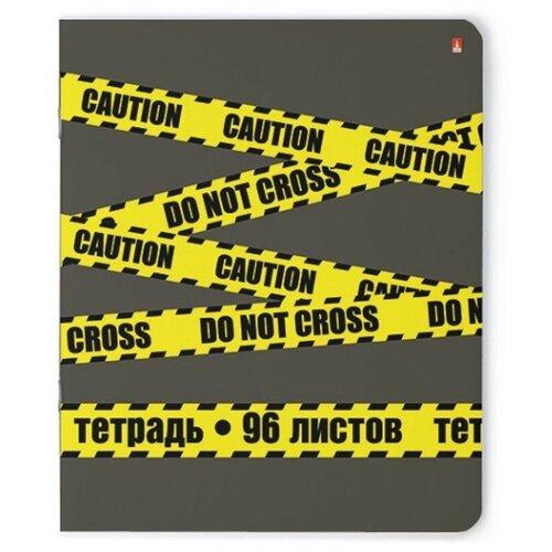 Купить Тетрадь общая А5, 96л, кл, скрепка ELEMENTS 5 видов 7-96-982 3 штуки, Альт, Тетради