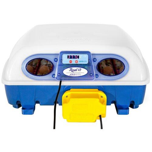 Инкубатор Borotto Real 49 Automatic белый/синий