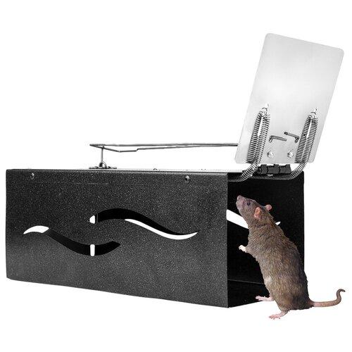 Крысоловка Клетка Металл с Перфорацией