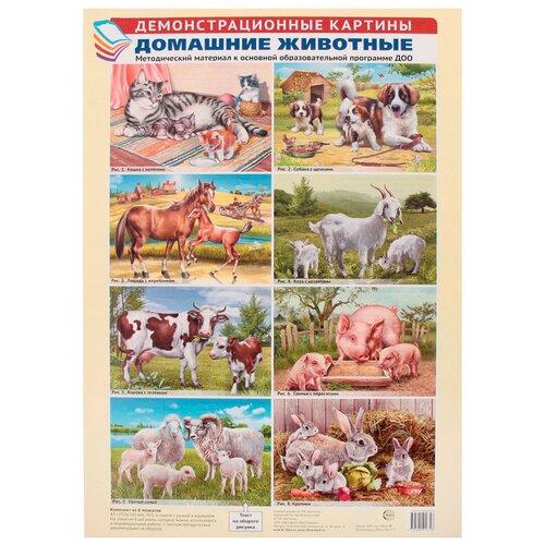 Плакат Творческий Центр СФЕРА Домашние животные (8 шт)