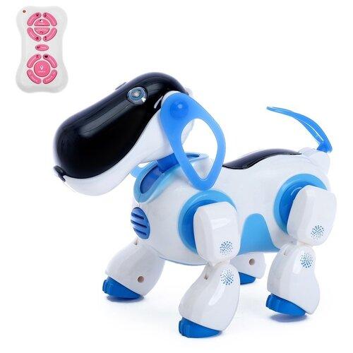 Фото - Робот радиоуправляемый, интерактивный «Киберпес Ки-Ки», русское озвучивание, световые эффекты, цвет синий радиоуправляемые игрушки 1 toy интерактивный радиоуправляемый щенок робот дружок