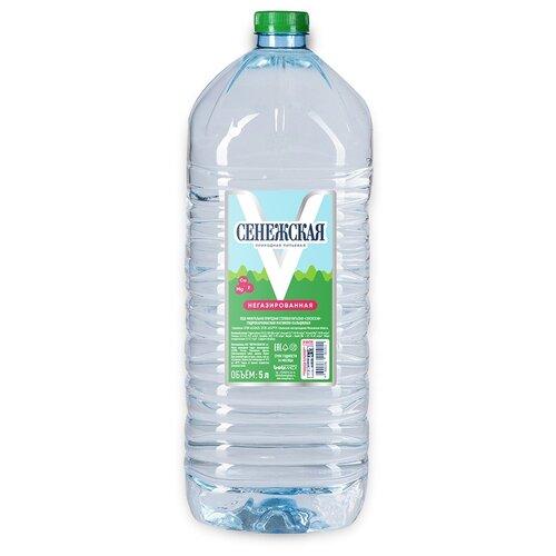 Вода питьевая Сенежская негазированная, ПЭТ, 5 л вода минеральная сенежская негазированная пэт 1 5 л