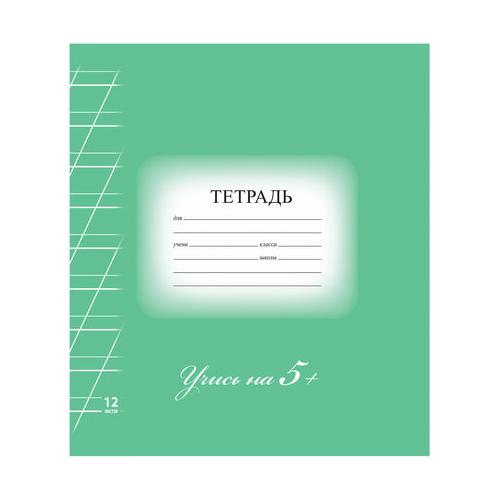 Купить Тетрадь BRAUBERG, Эко, 5-ка, косая линия, 12 листов, Тетради