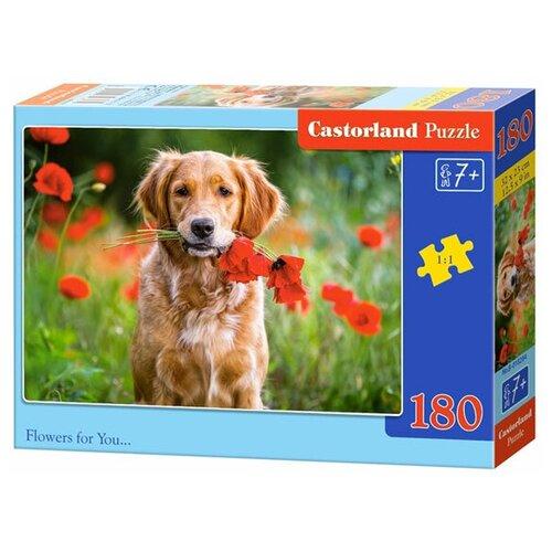 Пазл Castorland Flowers for You... (B-018284), 180 дет. пазл castorland к старту готов b 018406 180 дет