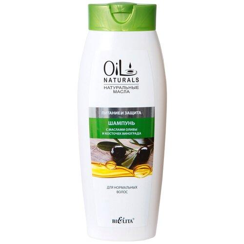Bielita шампунь Oil Natural Питание и защита с маслами оливы и косточек винограда, 430 мл