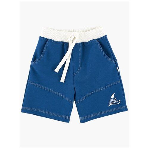Фото - Шорты Mini Maxi, 0716, цвет синий 0716(2)серо-син-98 98 шорты mini maxi 4248 цвет красный 4248 2 красный 98 98