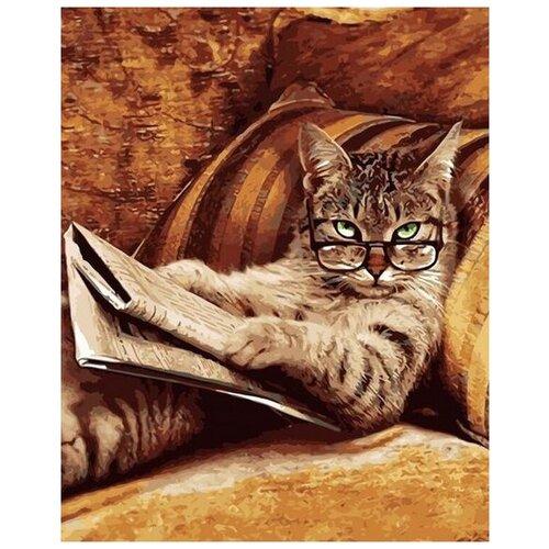 Купить Картина по номерам Paintboy Учёный кот VA-2303, 40x50 см, Картины по номерам и контурам